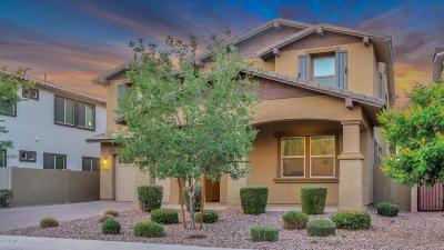 Chandler Single Family Home For Sale: 4166 E Glacier Place