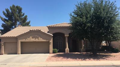 Chandler Single Family Home For Sale: 5702 W Gary Drive
