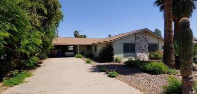 Tempe Single Family Home UCB (Under Contract-Backups): 1236 E La Jolla Drive