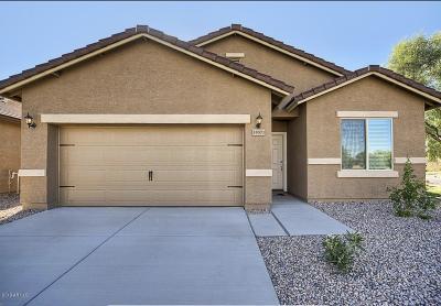 Maricopa Single Family Home For Sale: 20446 N Mac Neil Street