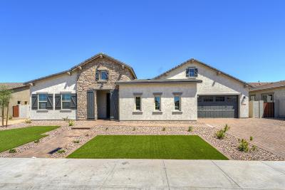 Peoria Single Family Home For Sale: 9432 W Villa Hermosa