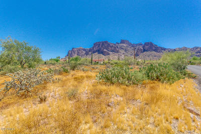 Apache Junction Residential Lots & Land For Sale: 5900 E Roundup Street