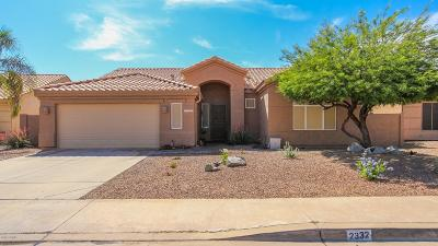 Mesa Single Family Home For Sale: 2332 S Revolta