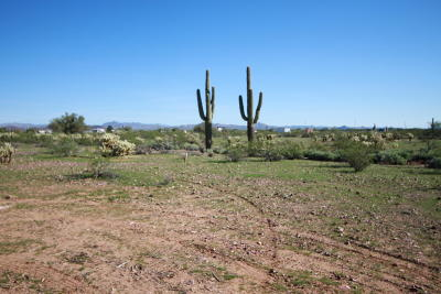 Morristown Residential Lots & Land For Sale: 0002 N 251st Avenue