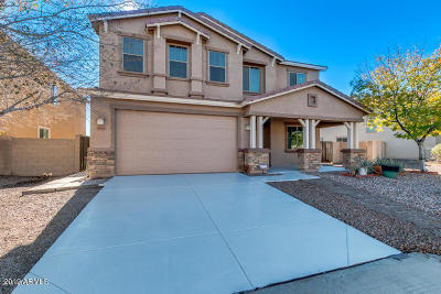 San Tan Valley Single Family Home For Sale: 1065 E Coyote Creek Way
