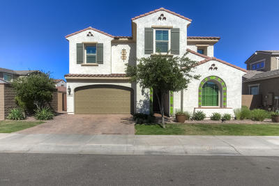 Chandler Single Family Home For Sale: 4221 S Barberry Drive