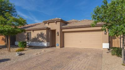 San Tan Valley Single Family Home For Sale: 34015 N Slate Creek Drive