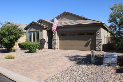 San Tan Valley Single Family Home For Sale: 671 E Blossom Road
