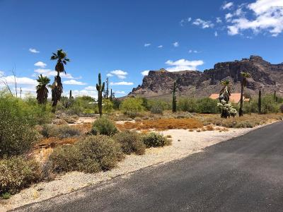 Apache Junction Single Family Home For Sale: 4920 E Pioneer Street