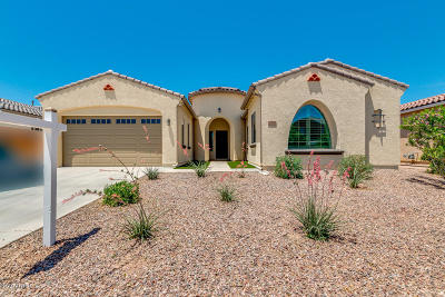 Queen Creek Single Family Home For Sale: 19560 E Apricot Lane