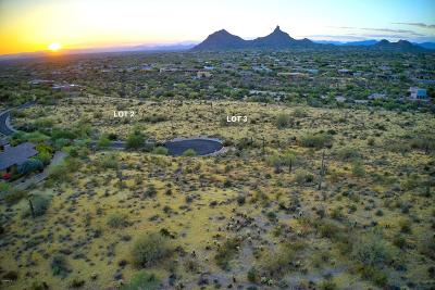 Scottsdale Residential Lots & Land For Sale: 10732 E Pinnacle Peak Road