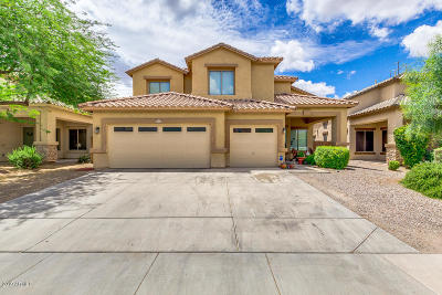 Laveen Single Family Home For Sale: 4609 W Donner Drive W