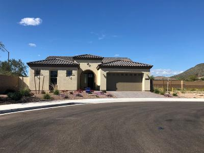 Peoria Single Family Home For Sale: 12882 W Pasaro Drive