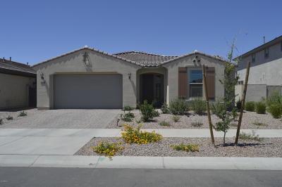 Mesa Single Family Home For Sale: 10622 E Wavelength Avenue