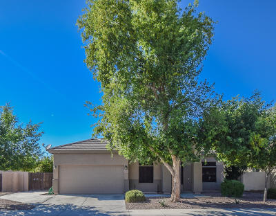 Maricopa Single Family Home For Sale: 43292 W Oakland Court