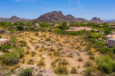 Scottsdale Residential Lots & Land For Sale: 9857 N 128th Street