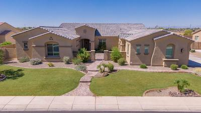 Gilbert Single Family Home For Sale: 3064 E Blackhawk Drive