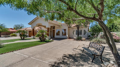 Peoria Single Family Home For Sale: 9514 W Avenida Del Sol