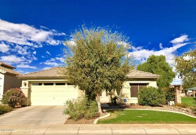 Maricopa Single Family Home For Auction: 44448 W Vineyard Street