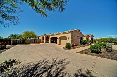 Cave Creek Single Family Home For Sale: 31440 N 44th Street