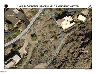 Phoenix Residential Lots & Land For Sale: 1835 E Cinnabar Avenue