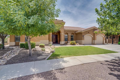 Queen Creek Single Family Home For Sale: 20221 E Avenida Del Valle