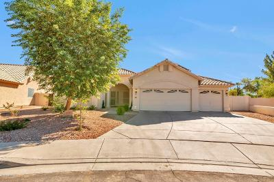 Gilbert Single Family Home For Sale: 731 S Pueblo Street