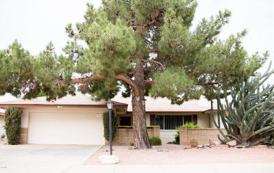 Tempe Single Family Home For Sale: 1985 E Pebble Beach Drive