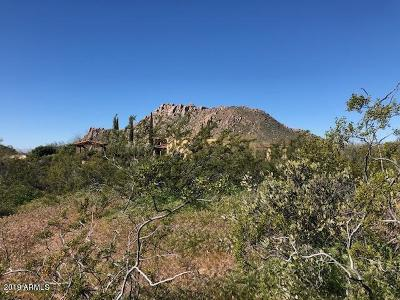 Scottsdale Residential Lots & Land For Sale: 26125 N 116th Street