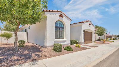 Litchfield Park Single Family Home For Sale: 14200 W Village Parkway #2028