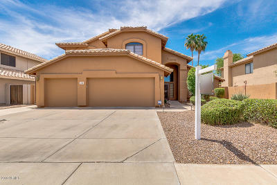 Chandler Single Family Home For Sale: 3881 W Jasper Drive