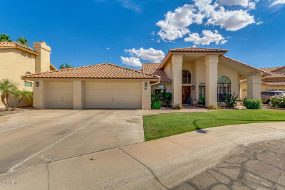 Chandler Single Family Home For Sale: 3355 S Holly Court