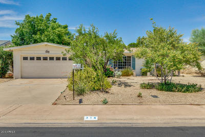 Tempe Single Family Home For Sale: 314 E Pebble Beach Drive