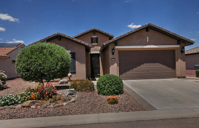 Florence Single Family Home For Sale: 6434 W Stony Quail Way