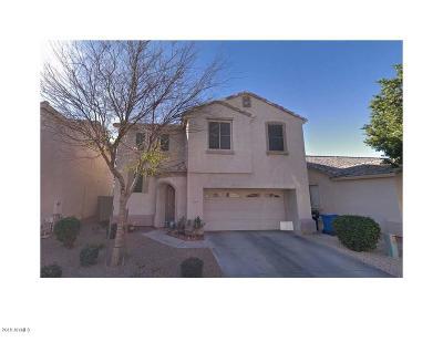 Mesa Single Family Home For Sale: 9065 E Gable Avenue