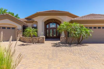 Peoria AZ Single Family Home For Sale: $1,050,000