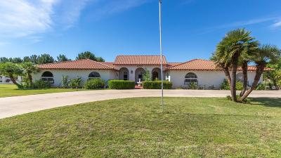 Peoria, Glendale Single Family Home For Sale: 6781 W Gelding Drive