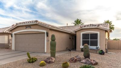 Surprise Single Family Home For Sale: 11551 W Coral Snake Court