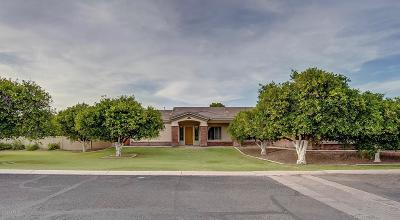 Mesa Single Family Home For Sale: 3502 E Norcroft Circle
