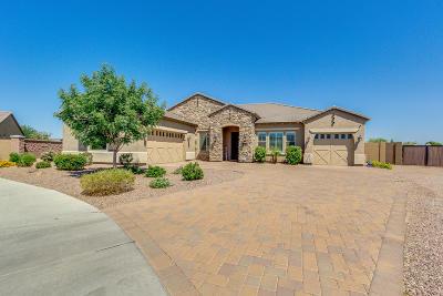Queen Creek Single Family Home UCB (Under Contract-Backups): 22038 E Camacho Road
