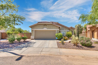 Anthem Single Family Home For Sale: 4558 W Stoneman Drive