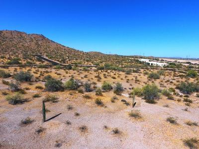 Goodyear Residential Lots & Land For Sale: 9435 S Krista Drive E