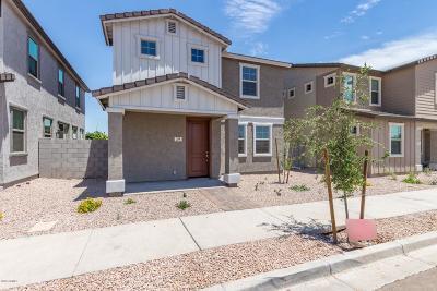 Mesa Single Family Home For Sale: 243 N Sunrise