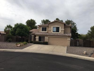 Mesa Single Family Home For Sale: 9330 E Fountain Street