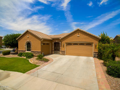 Chandler Single Family Home For Sale: 3232 S Kimberlee Way