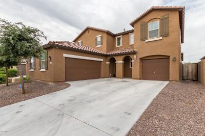 Buckeye Single Family Home For Sale: 1658 N 214th Lane