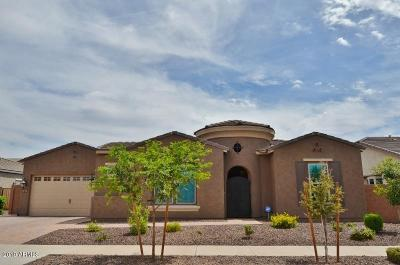 Queen Creek Single Family Home For Sale: 20063 E Maya Road