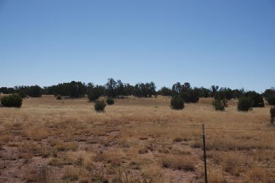 Heber AZ Residential Lots & Land For Sale: $39,900