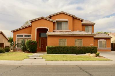 Single Family Home For Sale: 2080 W Mulberry Drive