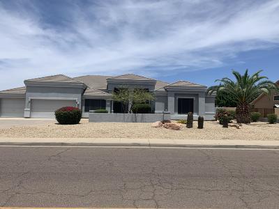 Phoenix Single Family Home For Sale: 4212 W Paradise Lane